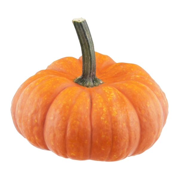Pumpkins Mini