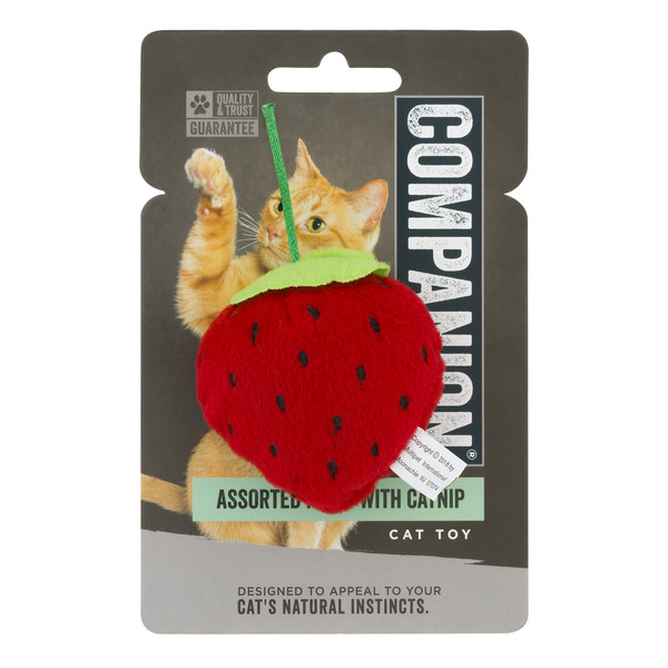 Companion Cat Toy Assorted Fruit with Catnip