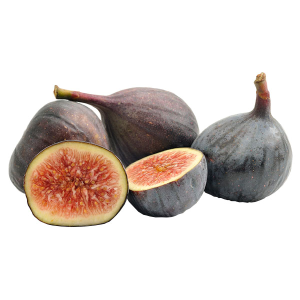 Figs Clamshell