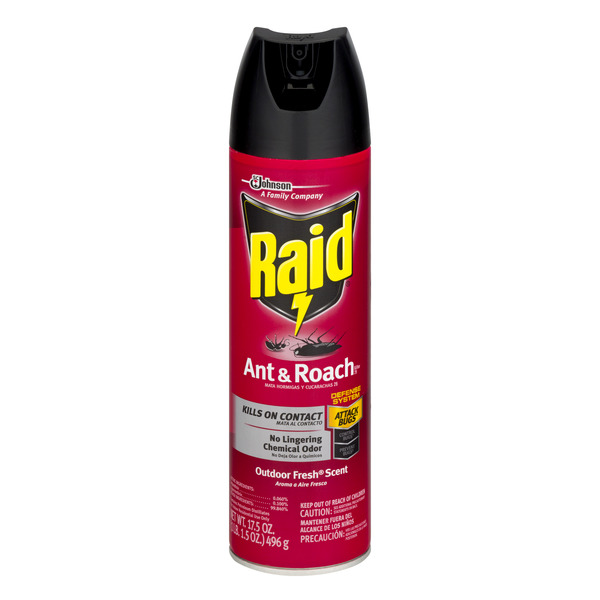 Raid Ant & Roach Killer Outdoor Fresh Scent Aerosol