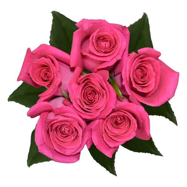 Roses Bunch Pink